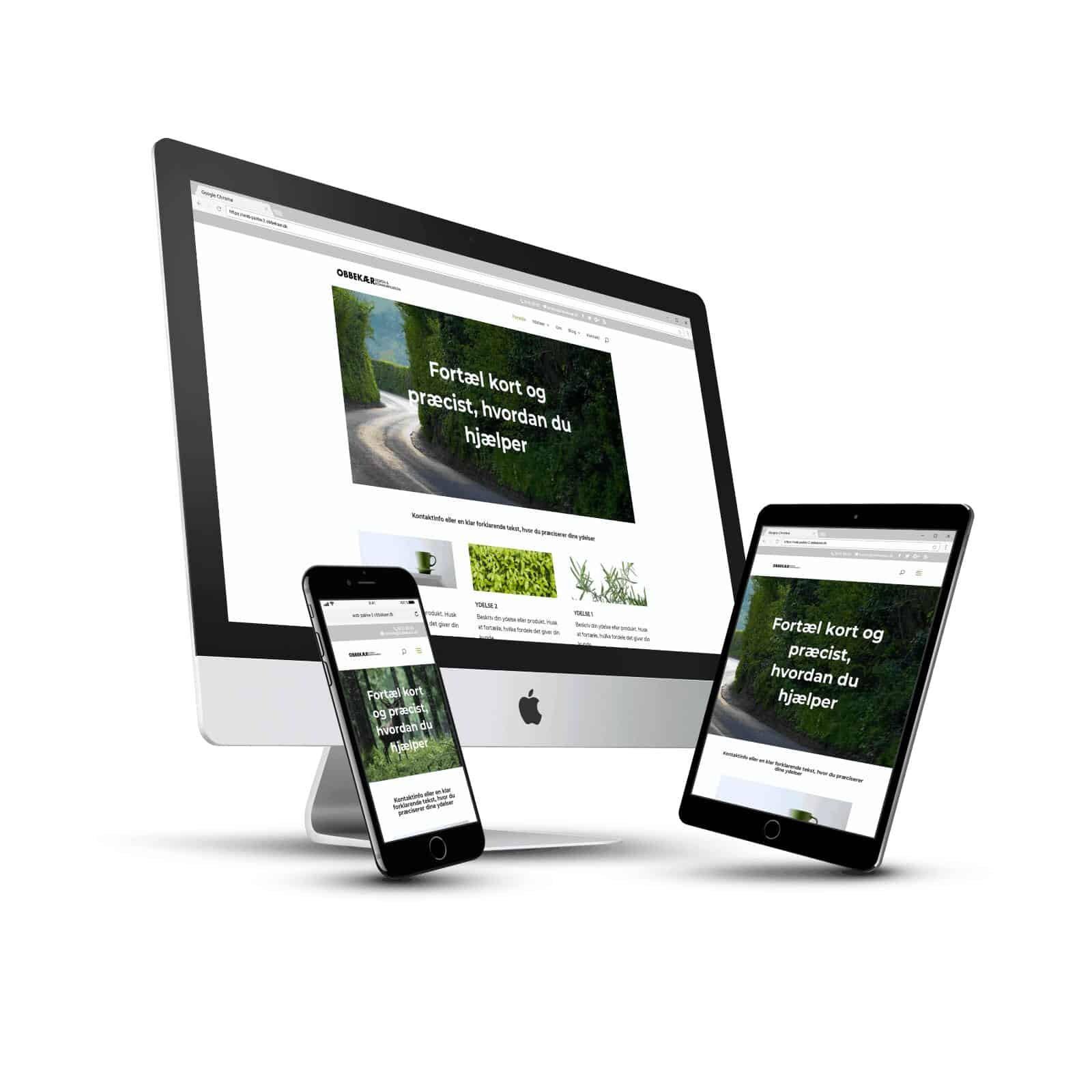 Hjemmeside Startpakke